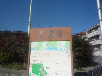 ○赤坂とおりを越えるP1110950.JPG