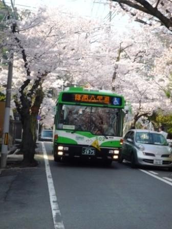 ☆バスP1050182.JPG