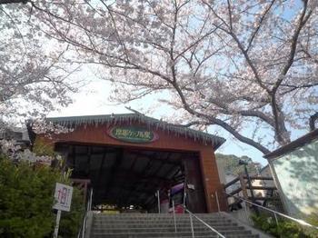 ☆駅P1050186.JPG
