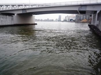 ☆魚崎の運河P1120552.JPG