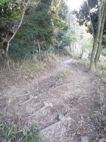 下山P1130344.JPG