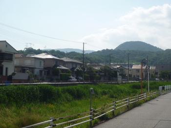 山へP1050661.JPG