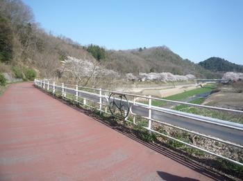 山田サイクリングロードP1120741.JPG