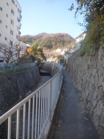 川の横P1110954.JPG