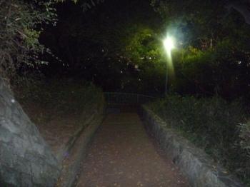 暗い側道P1020644.JPG