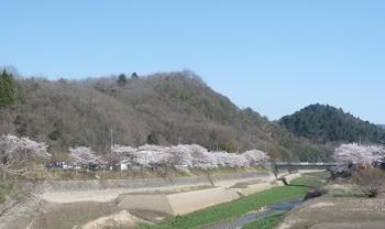 桜つくはらエントランスP1120726.JPG