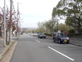 赤坂8.JPG