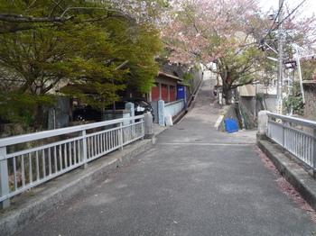 青谷道入り口P1120816.JPG