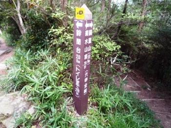 1鈴P1010015.JPG