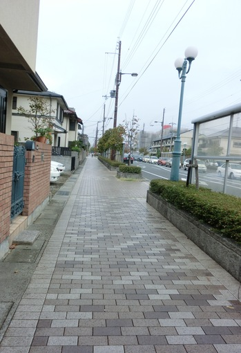 171から夙川へCIMG1875.JPG