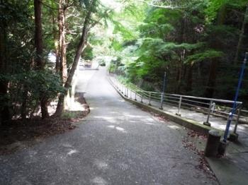 A滞留時のあたりの舗装道路P1010045.JPG