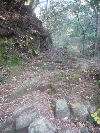 坂が始まるP1110996.JPGのサムネール画像