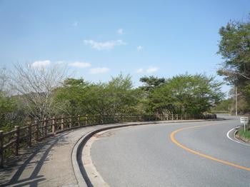 道路P1130206.JPGのサムネール画像