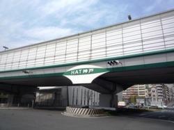 入り口HATP1040577.JPG
