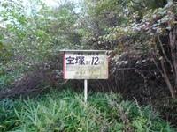 分岐P1010308.JPG