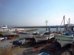 漁港P1050399.JPG
