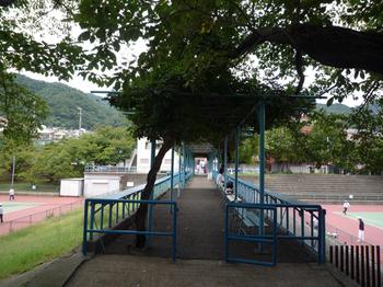 王子公園19