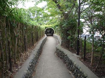 王子公園21