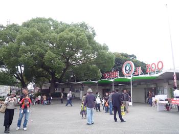 王子公園09